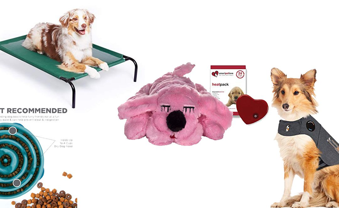 10 good gift ideas for a dog