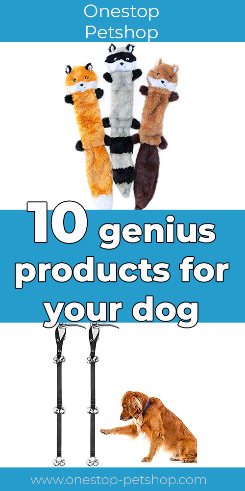 10 genius products for your dog