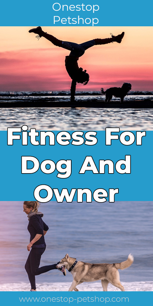 Fitness For Dog And Owner Pinterest