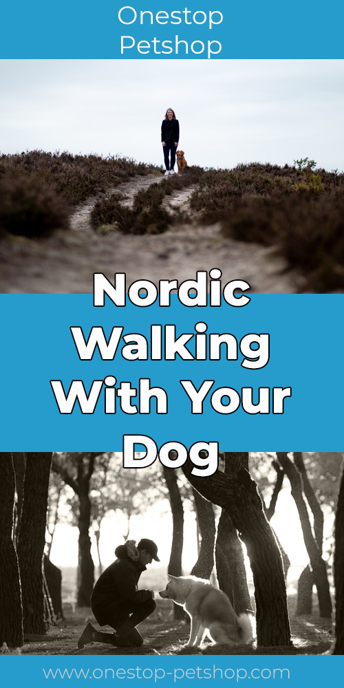 Nordic Walking With Your Dog Pinterest