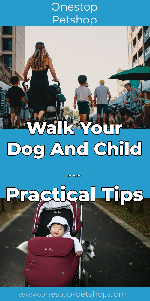 Walk Your Dog And Child – Practical Tips Pinterest